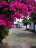 Suchitoto, Cuscatlán