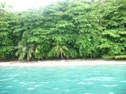 Parque Nacional Jeannete Kawas, Tela