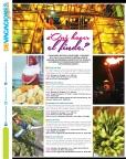 Página 30 de agosto
