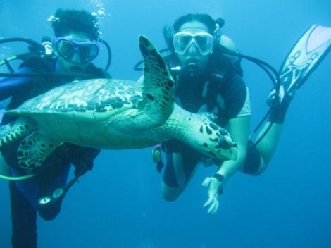 Foto oceanicasv.com
