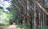 Parque Nacional Montecristo.