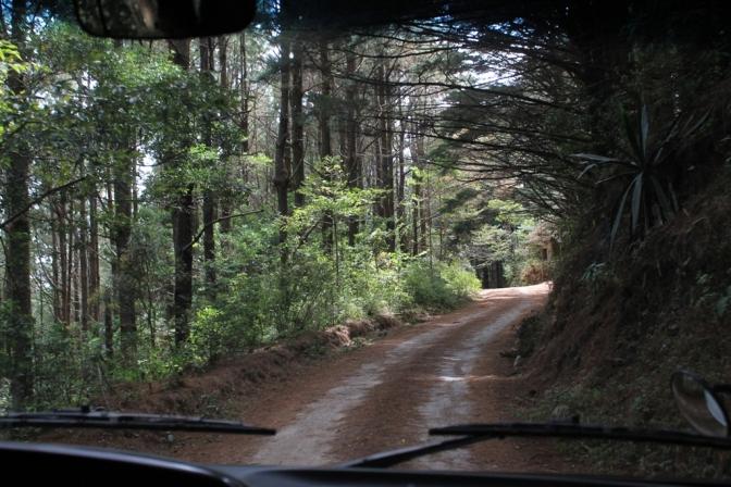 Image result for el salvador Parques nacionales Montecristo