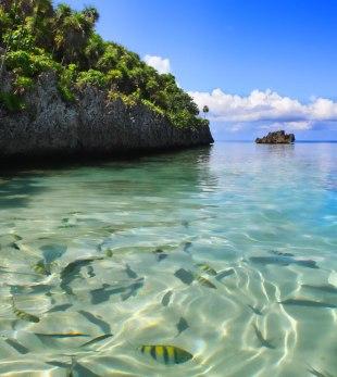 Peces de todos colores abundan en la isla