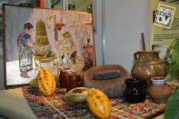 El cacao, el grano de los dioses mayas.