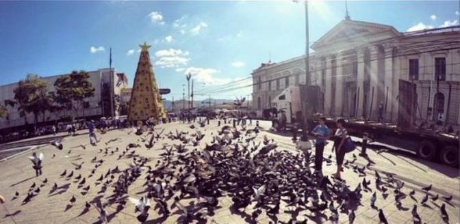 Ciudades salvadoreñas a las que les luce la navidad